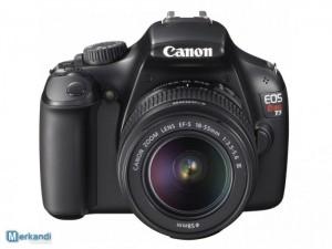 canon digital cameras excess inventory